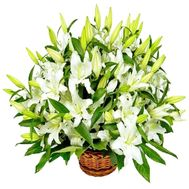 """Basket for the wedding"" in the online flower shop df.ua"