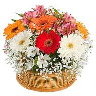 Basket with gerberas - flowers and bouquets on df.ua