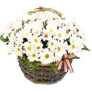 Girl`s basket - flowers and bouquets on df.ua