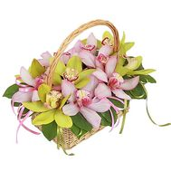 Basket made of pink and green orchids - flowers and bouquets on df.ua