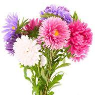 Небольшой букет из астр - цветы и букеты на df.ua