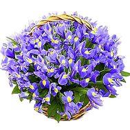 Огромная корзина из ирисов - 101 ирис - цветы и букеты на df.ua
