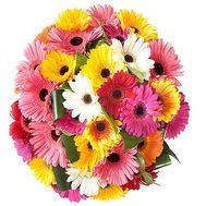 Huge bouquet of gerberas - flowers and bouquets on df.ua