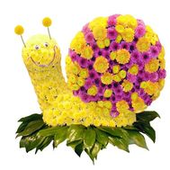 Snail from flowers - flowers and bouquets on df.ua
