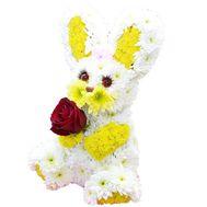 Зайчик из цветов - цветы и букеты на df.ua