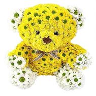 Yellow bear of chrysanthemum - flowers and bouquets on df.ua