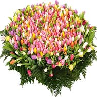 1001 tulip - flowers and bouquets on df.ua