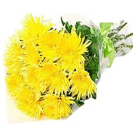 11 chrysanthemums in a bouquet - flowers and bouquets on df.ua