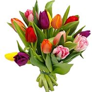 15 tulips bouquet - flowers and bouquets on df.ua