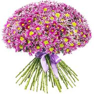 45 chrysanthemums - flowers and bouquets on df.ua