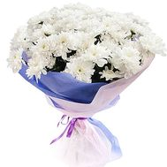 9 chrysanthemums - flowers and bouquets on df.ua