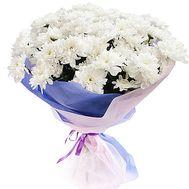 9 хризантем - цветы и букеты на df.ua