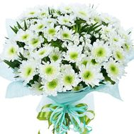 White Chrysanthemums - flowers and bouquets on df.ua