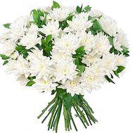 Букет белых хризантем - цветы и букеты на df.ua