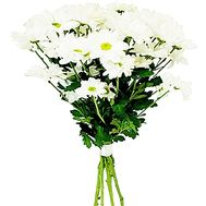 Bouquet of white chamomiles - flowers and bouquets on df.ua