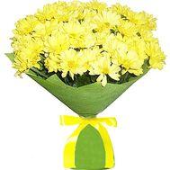 Букет хризантем - цветы и букеты на df.ua