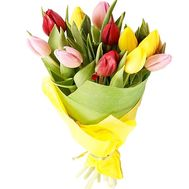 Bouquet of 11 tulips - flowers and bouquets on df.ua