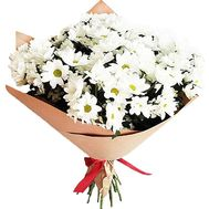 Bouquet of 25 chrysanthemums - flowers and bouquets on df.ua