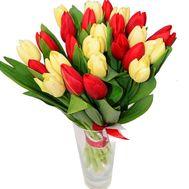 Букет з 25 тюльпанів - цветы и букеты на df.ua