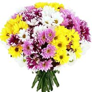 Bouquet of chrysanthemums of different colors - flowers and bouquets on df.ua