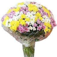 Bouquet of chrysanthemum - flowers and bouquets on df.ua