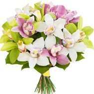 Bouquet of multicolored orchids - flowers and bouquets on df.ua