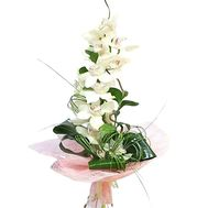 Bouquet from a branch of a white orchid - flowers and bouquets on df.ua