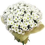 """A bouquet of beautiful chamomiles"" in the online flower shop df.ua"