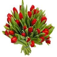 Bouquet of red tulips - flowers and bouquets on df.ua