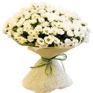 Букет ромашок купити - цветы и букеты на df.ua