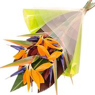 A bouquet of strelitzia - flowers and bouquets on df.ua