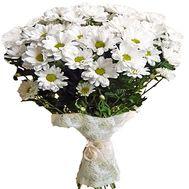 Букетик ромашок - цветы и букеты на df.ua