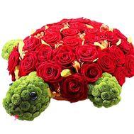 Черепаха из цветов - цветы и букеты на df.ua