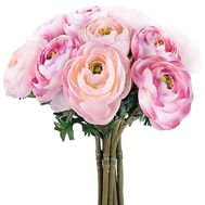 Exotic flowers of the Ranunculus - flowers and bouquets on df.ua