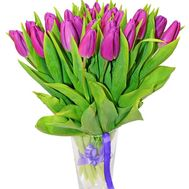 Purple tulips - flowers and bouquets on df.ua