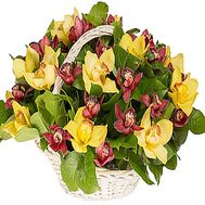 Basket of orchids - flowers and bouquets on df.ua
