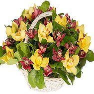 Корзина из орхидей - цветы и букеты на df.ua