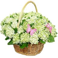 Lily of the valley basket - flowers and bouquets on df.ua