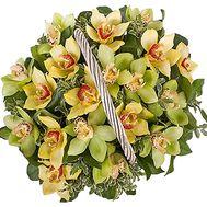 Корзина орхидей - цветы и букеты на df.ua