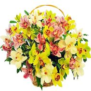 Basket with orchids - flowers and bouquets on df.ua