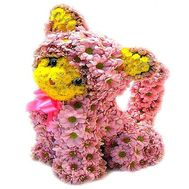 Котик из цветов - цветы и букеты на df.ua