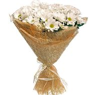 Красиві ромашки - цветы и букеты на df.ua