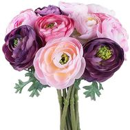 Ranunculus buy - flowers and bouquets on df.ua