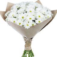 Ромашки букет - цветы и букеты на df.ua