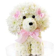 Собака из цветов - цветы и букеты на df.ua
