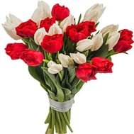 Live tulips - flowers and bouquets on df.ua