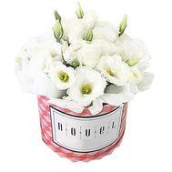 Белые эустомы в коробке - цветы и букеты на df.ua