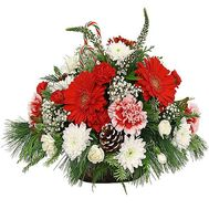 Flowers for Christmas - flowers and bouquets on df.ua