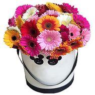 Цветы в круглой коробке - цветы и букеты на df.ua