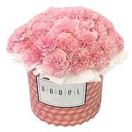 Гвоздики в коробке - цветы и букеты на df.ua